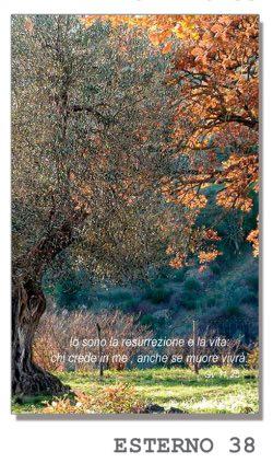 https://www.fotoceramichemarino.it/img/papiro/fronte/38.jpg